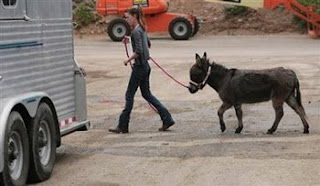 Gerdy Burro and Alex, from Las Tejas ranch