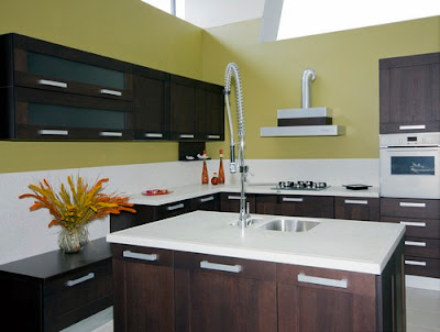 Modern Kitchen Design Pictures 7