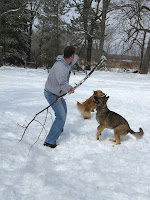 Clint Throwing a Tree Branch for Zada, the German Shepherd