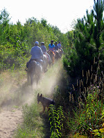 Horseback Trail Riders with Dust & Sun