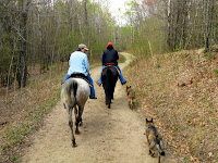 Trail Riding in Pillsbury State Forest with the Dogs
