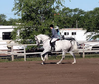 National Show Horse Showing Hunt Seat at the Canter