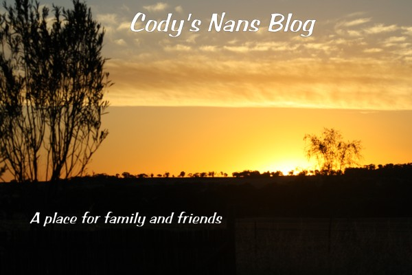 Cody's Nans Blog