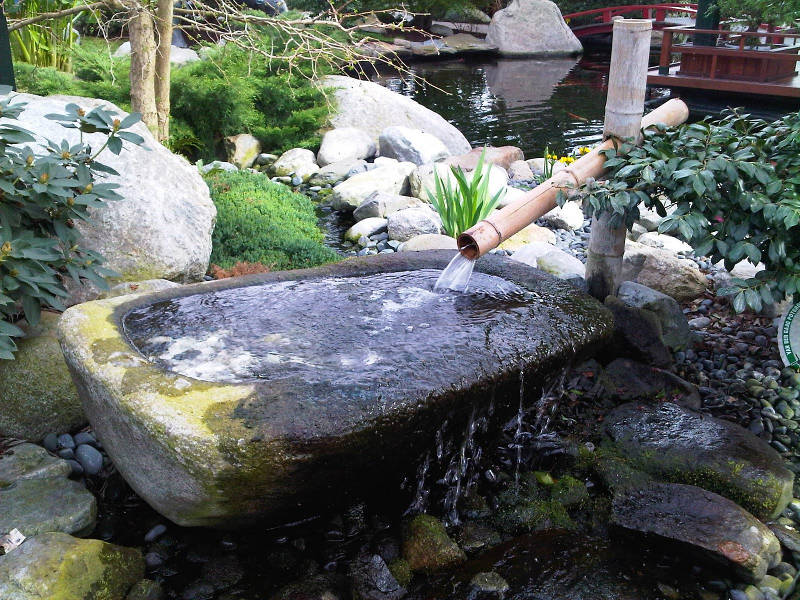 Japanese watergarden in west holland the weekend traveller for Japanese outdoor plants