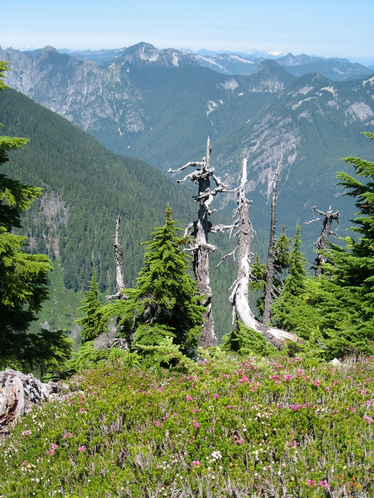 Life northwest tacoma hiker glorifies cascade range with her photos