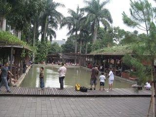 Kuntum Nursery- Bogor, Kuliner Organik Sambil Bersejuk-sejuk