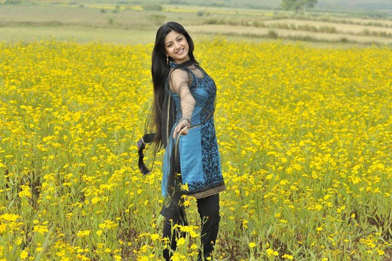 Poonam Kaur New Hot Stills from Nagavalli Movie wallpapers