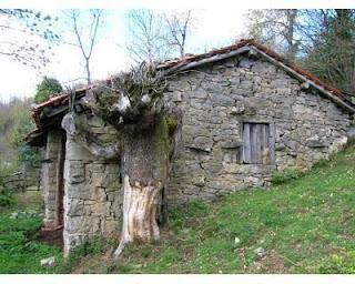 Casas sin crisis 10000 euros casa a rehabilitar con terreno en asturias - Casa de campo asturias ...