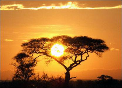 Dê-me o seu sol também. Me envie uma imagem de um sol e a colocarei aqui com muito carinho.