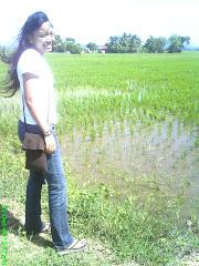 ohh...paddy field!!!