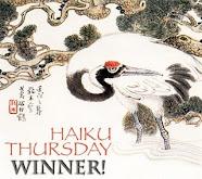 Haiku Winner