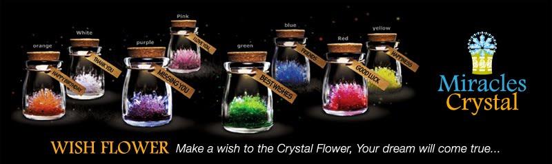 Miracles Crystal