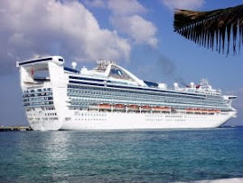 Join SWF42 on Caribbean Princess on February 20, 2011