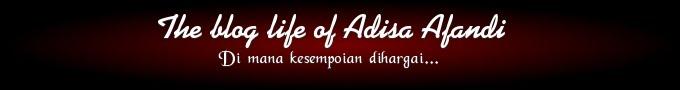 The Blog Life of Adisa Afandi