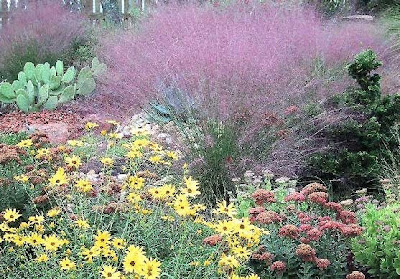 LANDSCAPE DESIGN + MORE: Xeriscape design