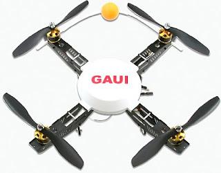 GAUI 330X-S QUAD FLYER KIT Images