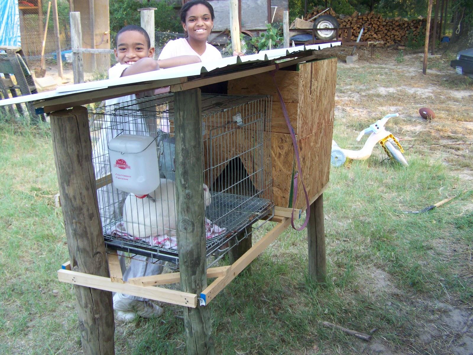Plans For Building Rabbit Cages Home Plans Home Design