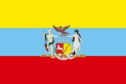 Era de unos tonos más claros y con un pequeño escudo en la parte superior . bandera colombia