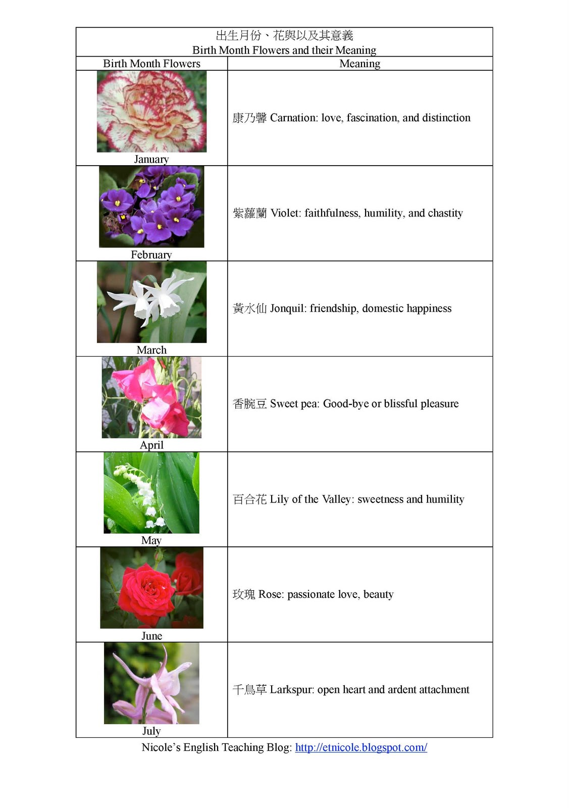 Birth Flowers By Month Beautiful Flowers