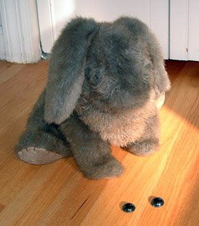 stuffed rabbit with no eyes