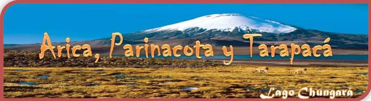 Arica, Parinacota y Tarapacá