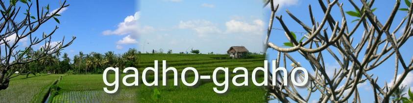 g a d h o g a d h o