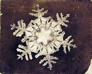 fotomiografia19 feita por wilson a bentley de um floco de neve_cristal de neve