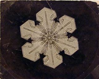 fotomiografia14 feita por wilson a bentley de um floco de neve_cristal de neve