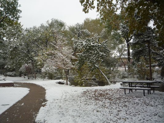 Snow in Boulder, Colorado