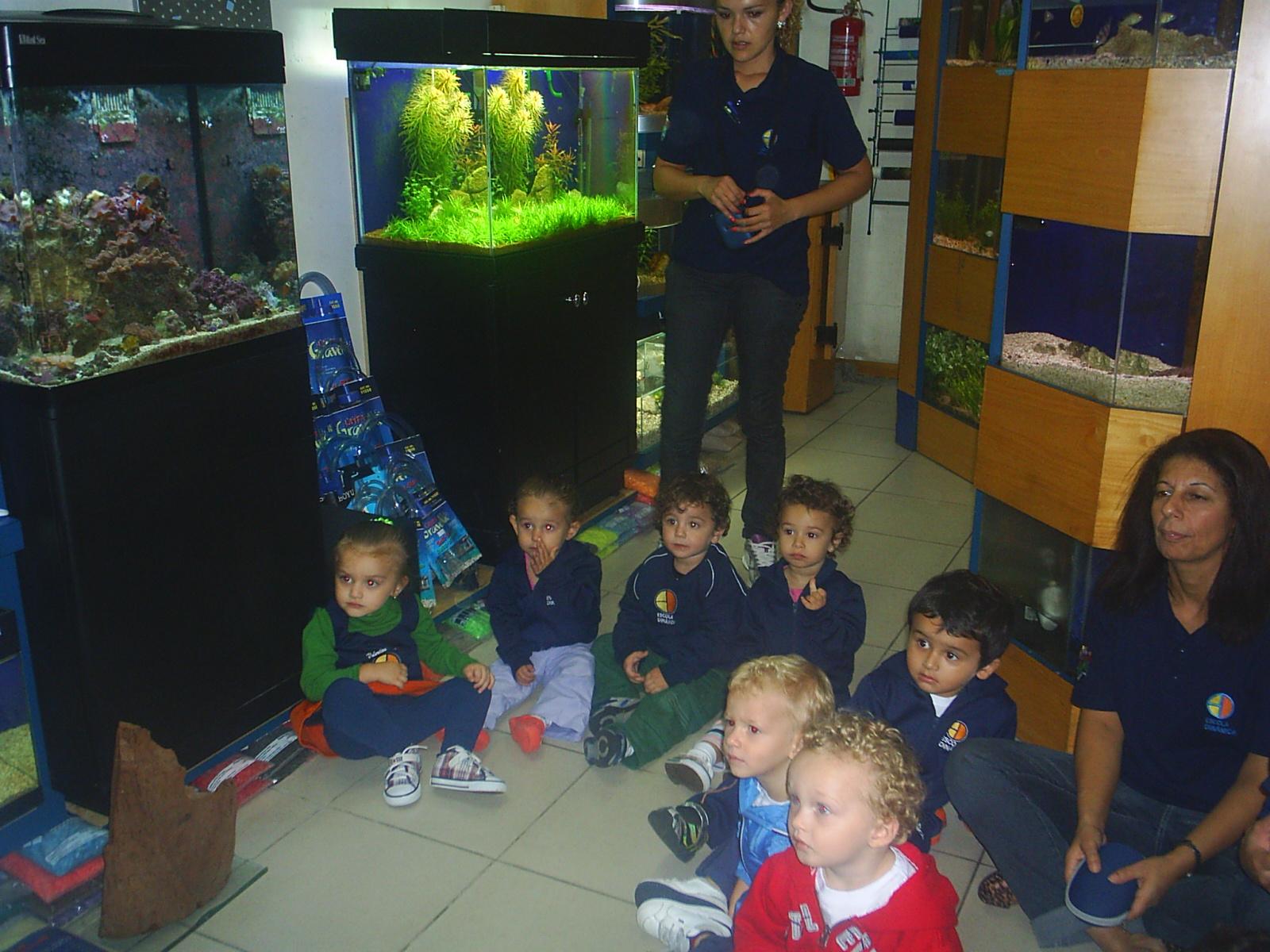 Educação Infantil: Projeto Peixes #2C4262 1600 1200