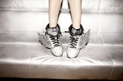 I can fly with adidas