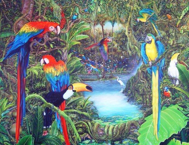 Araras exóticas / exótic birds