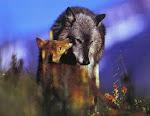 BEVARA OCH SKYDDA VARGEN - SAVE & PROTECT THE WOLF