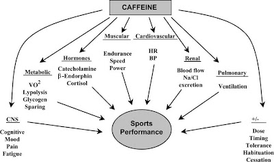 caffeine and performance dissertations Both quantitative and qualitative dissertations should be referred to by both  13 1 caffeine's ergogenic effect on sprint agility performance.