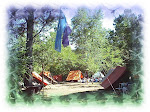 Camping en pleno Bosque
