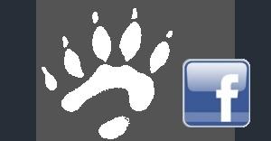 <i><b>Class of 2000</b></i> Facebook Group