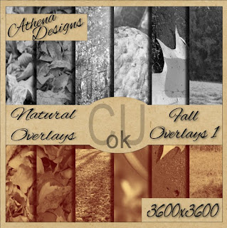 http://athenadesigns.blogspot.com/2009/10/cu-fall-overlays-free-for-limited-time.html