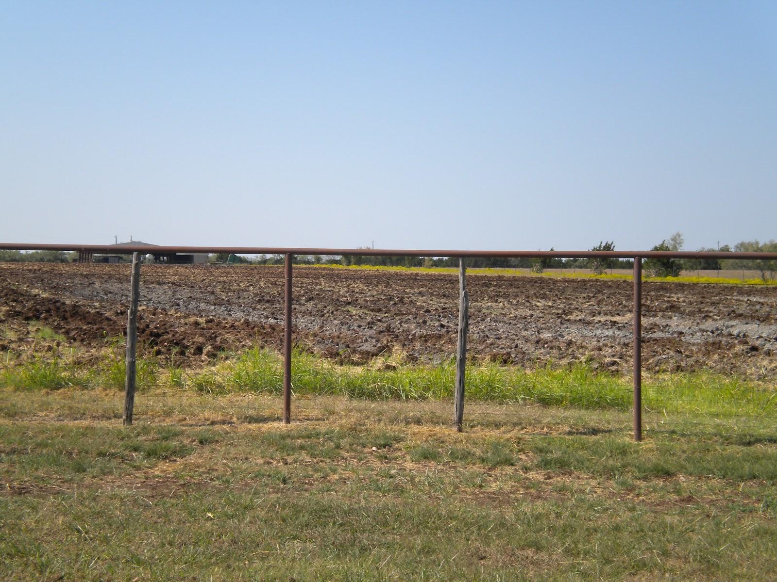 johnson county mudd farm near rio vista