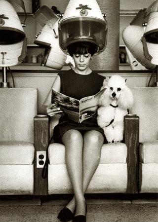 Farmboy and citygirl hit asia hairdressers for 1950 s beauty salon