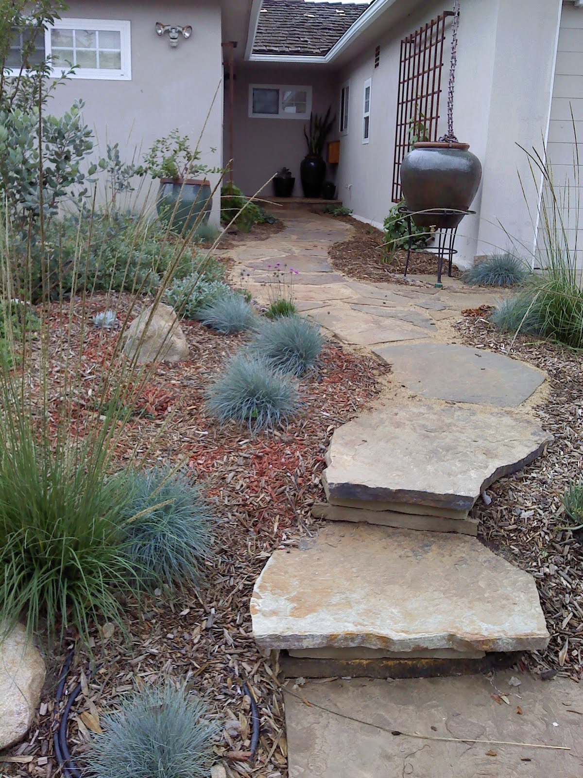 Artemisia Landscape Architecture Surfrider Foundation Ocean