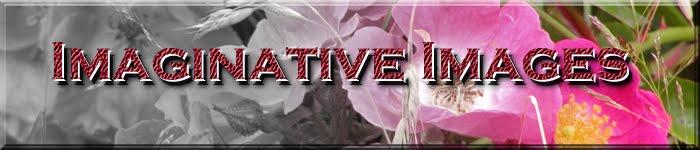 Imaginative Images