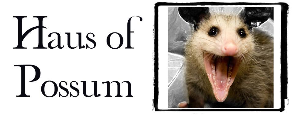 Haus Of Possum