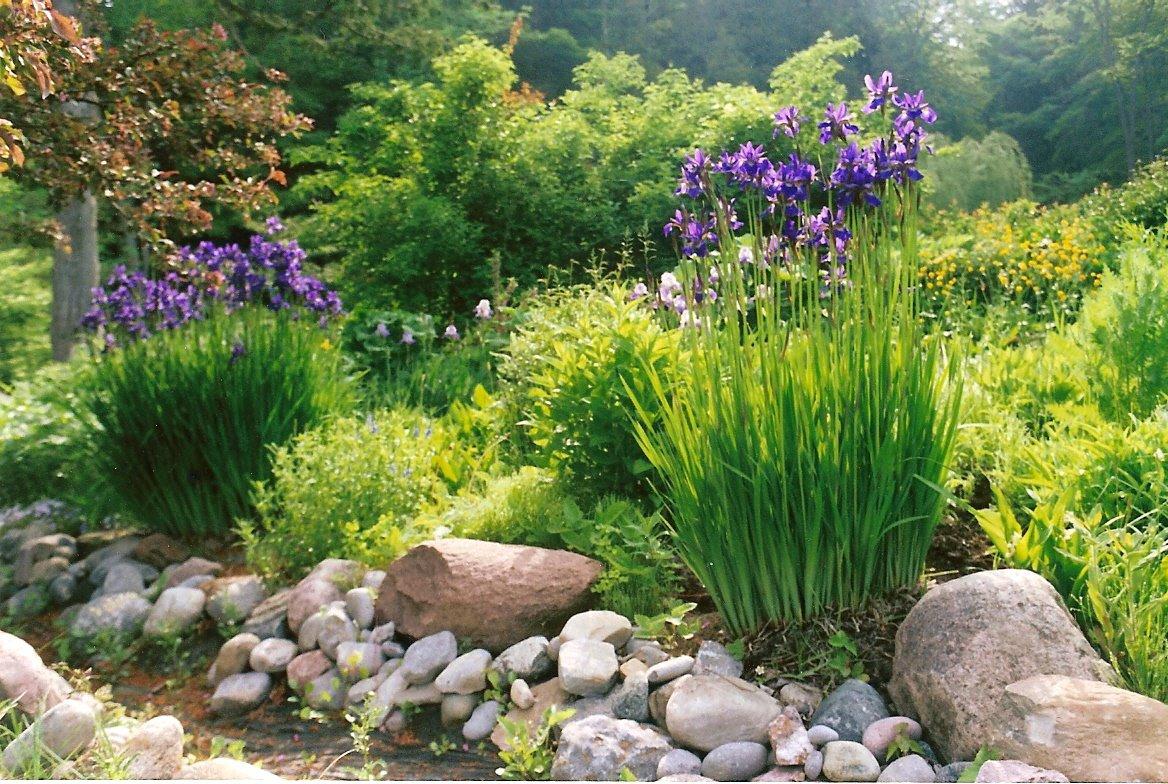 Country Garden Memories