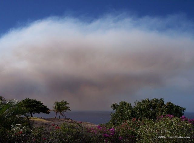Fire, Kohala Coast, Hawaii, Oct. 2007
