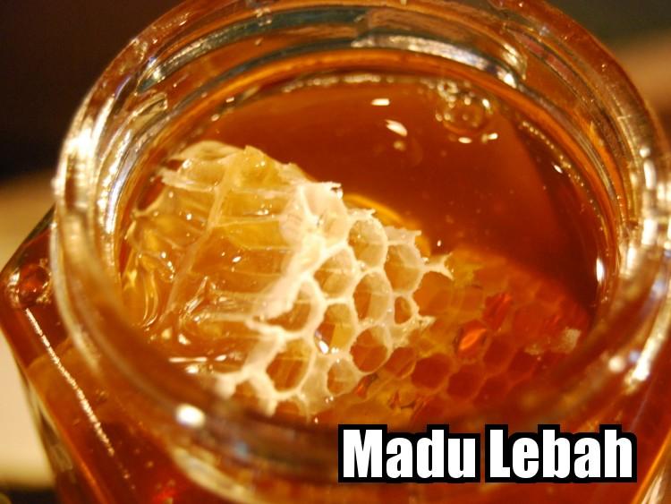 madu lebah asli