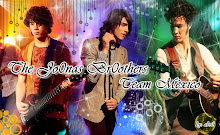 jonas brothers team mexico