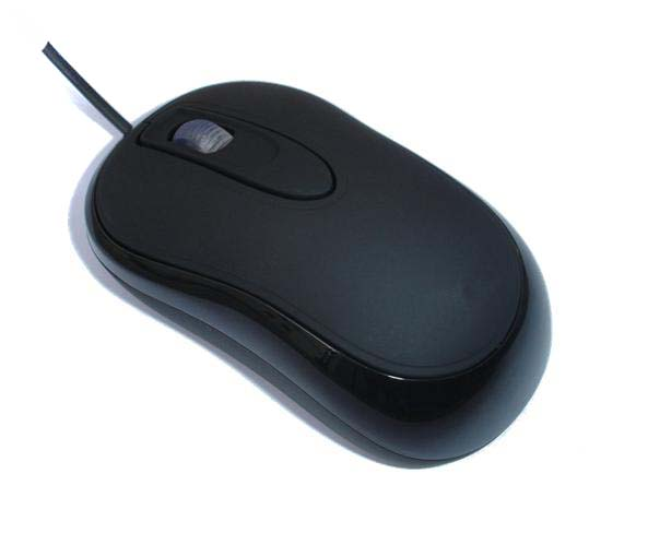 plural of computer mouse dictionary