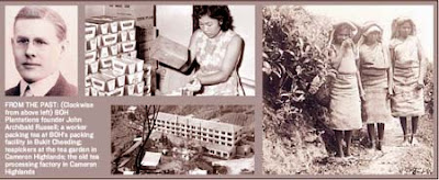 From the past: (Clockwise from above left) BOH plantations founder John Archibald Russell; a worker packing tea at BOH's packing facility in Bukit Cheeding; teapickers at the tea garden in Cameron Highlands; the old tea processing factory in Cameron Highlands.