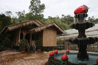 For leisure: An attraction at the farm is this bamboo hut.