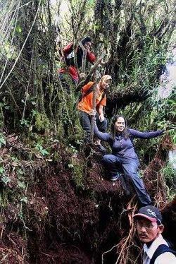 Challenging trek: The difficulties when trekking in the forest